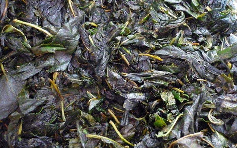 Ферментация листьев