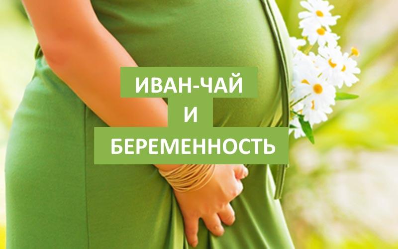 Беременность и Иван-чай – все за и против