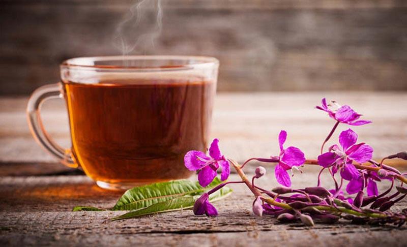 Иван-чай: правила применения