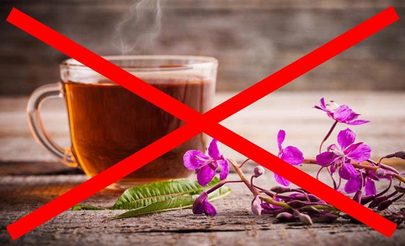 Иван чай: противопоказания