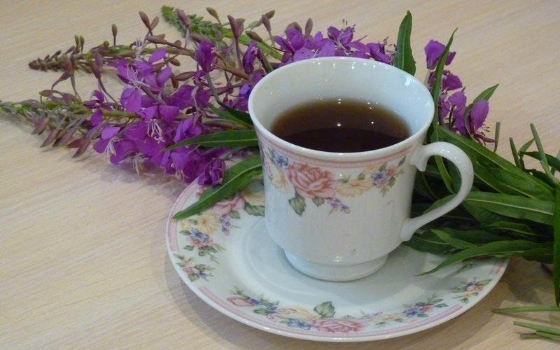 Как приготовить настой иван-чая от простатита