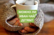 Можно ли Иван-чай детям? Вопрос от родителей