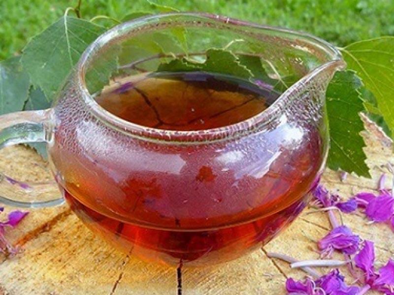 Кипрей узколистный ‒ чай с неимоверными целебными свойствами