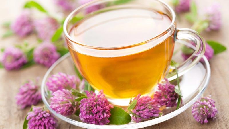 При каких заболеваниях эффективен Иван чай