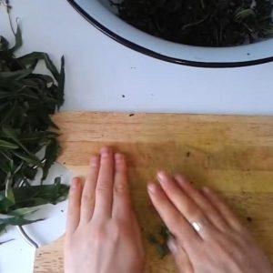 Ферментация кипрея и ее этапы