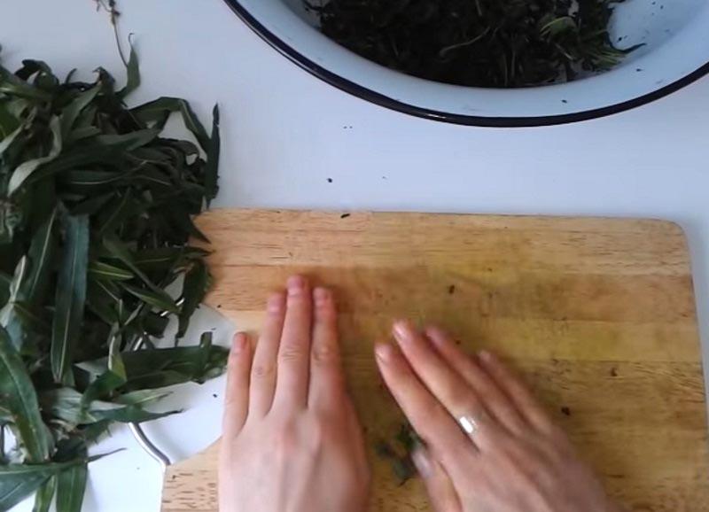 Способы ферментации кипрея