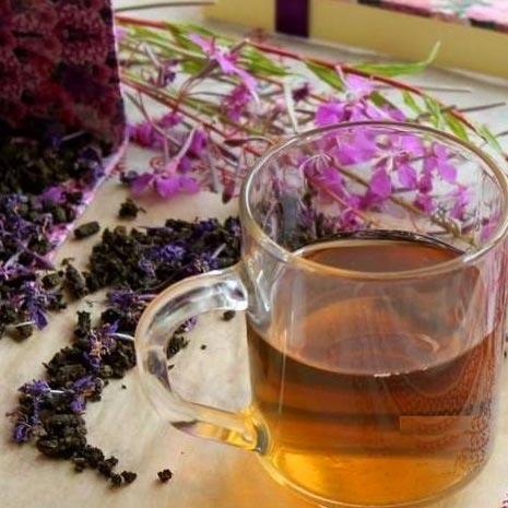 Заваривают ли цветки иван-чая, полезные свойства травы