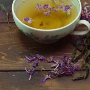 Чай из иван-чая способ приготовления и особенности процесса