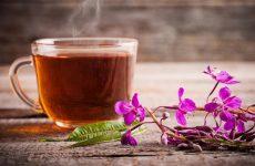Иван-чай: полезные свойства и как его заваривать правильно