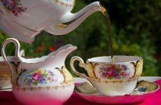 Как пить иван-чай правильно, получая максимальный эффект
