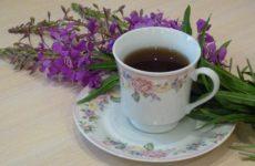 Как заваривать иван-чай правильно и эффективно