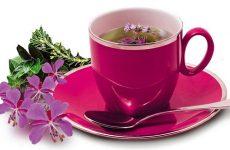 По какому принципу и сколько заваривать иван-чай
