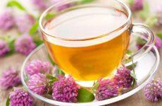 Правильное заваривание иван-чая и его основные способы