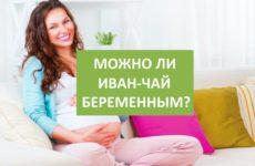 Здоровая беременность с Иван-чаем